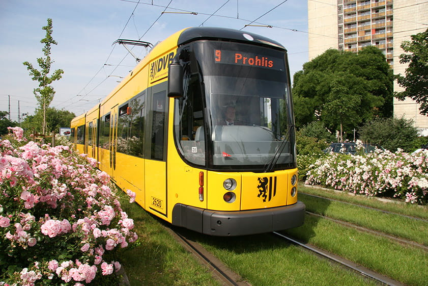 Yellow tram with blossoming flowers along the green track bed
